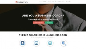 biz coach hub website