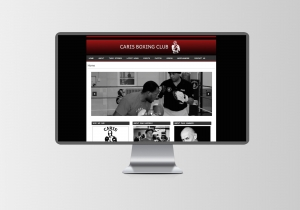 caris boxing website design