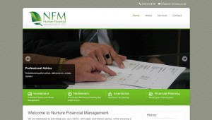 website for financial services company f